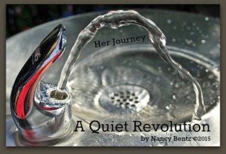 A Quiet Revolution - IS