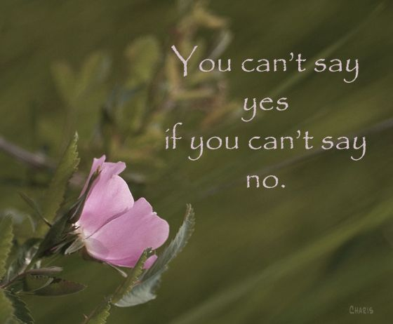 rosegrass_saying yes ch